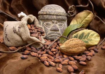 Un viaggio attraverso la Storia Cocoa-beans